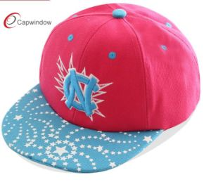 Screen Printing Plus 3D Embroidery Snapback Cap pictures & photos