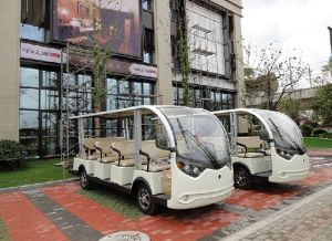ISO Approve 14 Passenger Sightseeing Car pictures & photos