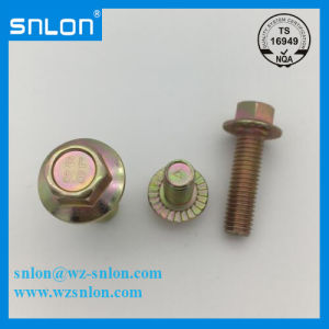 Hex Flange Bolt Screw High Strength for Auto Parts pictures & photos
