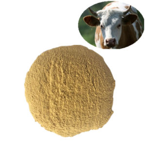 Corn Gluten Meal 60%/70% Feed Grade Feed Additives Veterinary Chemicals pictures & photos