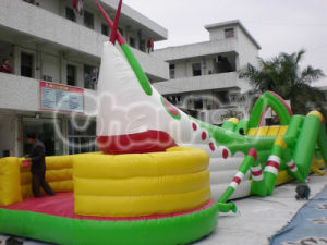 Large Insect Inflatable Amusement Bouncer with Slide Chsl229 pictures & photos
