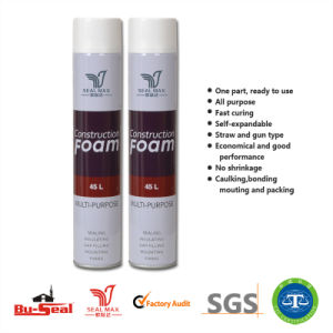Construction Gap Filling Materials PU Foam (SM-666)