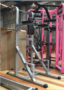 Fitness Equipment/Fitness Machine/Gym Equipment - Dip & Chin & Up Station Power Tower(SW-8002) pictures & photos