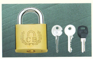 Heavy Duty Iron Padlock with Plated Finishing pictures & photos