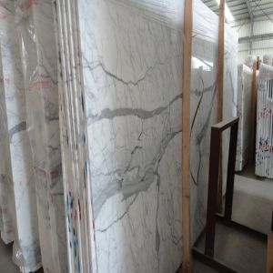 Beautiful Premium Staturio White Marble Slab with Grey Vein pictures & photos
