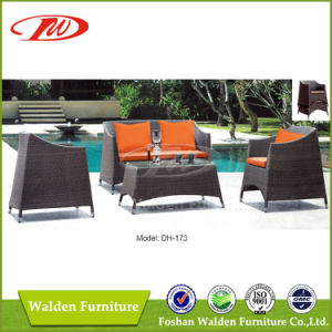 Outdoor Sofa, Rattan Sofa, Wicker Sofa (DH-173) pictures & photos