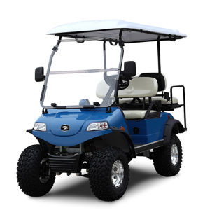 Golf Cart/Buggy with Solar Panel 2+2-Seater Green pictures & photos