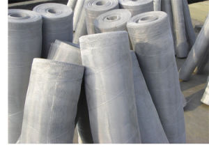 Window Screen Made in China with High Quality Lower Price pictures & photos