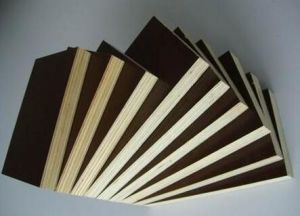 Film Faced Poplar-Eucalyptus Plywood for Decoration/Construction pictures & photos