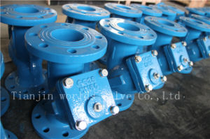 Wcb / Ductile Iron Y Type Strainer pictures & photos
