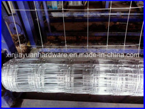 Cheap Galvanized Farm Field Fence /Cattle Fence Wholesale pictures & photos