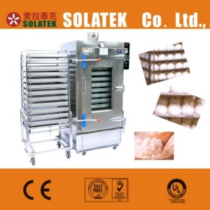 Gas/Electrothermal Steamer (SK-610B) pictures & photos