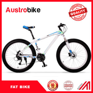 26′′ Fat Bike for Sale, Sand Bicycle for Sale, High Quality Cheap 26er Carbon Fat Bicycle, Fat Tire Mountain Bikes on Sale pictures & photos