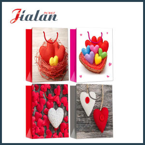 Glossy Laminated Art Paper Love Heart Shopping Gift Paper Bag pictures & photos