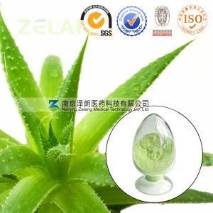 100% Natural Aloe Extract 95% Aloin pictures & photos
