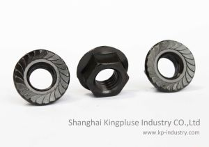 Hex Flange Nuts, DIN6923 pictures & photos