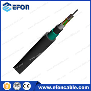 Double Jacket Armored Fiber Optic Cable pictures & photos