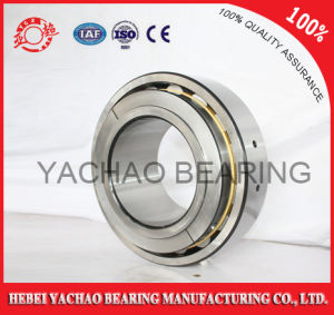 Cylindrical Roller Bearing (N203 Nj203 NF203 Nup203 Nu203) pictures & photos