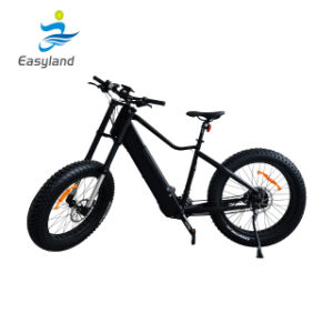 2017 Hotsell E- Bikes MTB Bicycle with 750W Motor Electric Bike