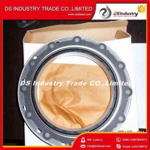 Cummins Diesel Engines M11 Engine Steel Oil Seal 4962745 pictures & photos