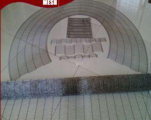 Conveyor Ladder Mesh Belt for Good Grade pictures & photos