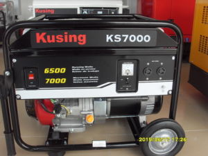 7000 Watt Portable Gasoline/Petrol Generator -1 Year Warranty-Original Packing pictures & photos