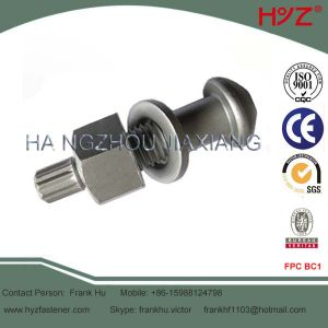 Dacromet Finish Structural Bolts ASTM A325tc pictures & photos