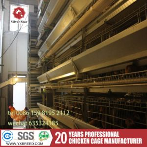 H Type Poultry Farms Poultry Equipment for Battery Bird Cage pictures & photos