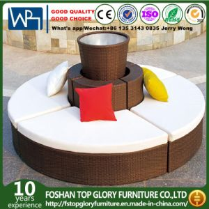 Brown Outdoor Rattan Sun Bed with Cushion and Pillow (TG-JW007) pictures & photos