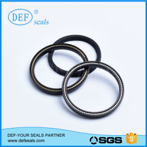 Carbon Filled PTFE Spring Energizes Seals for Hydraulic pictures & photos
