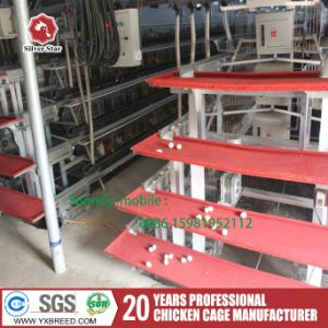Galvanized Chicken Breeding Farm Machinery Battery Layer Cage with Automatic Feeding pictures & photos