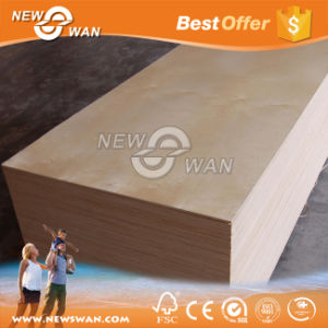 Exterior Birch Plywood/ Furniture Use Commercial Plywood pictures & photos