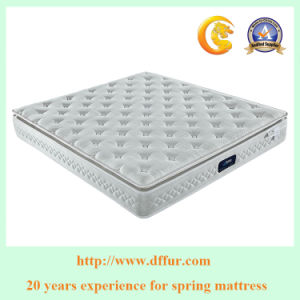 Gold Supplier China Factory Offer Pocket Spring Mattress pictures & photos