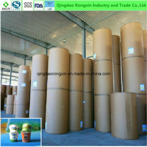 Double Sides PE Coated Paper for Ice Fruit Juice Cup pictures & photos