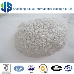 Kaolin Clay Vietnam Clay Washed and Calcined Kaolin for Ceramic pictures & photos