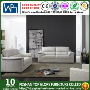 Home Modern Leather Sofa (TG-S09) pictures & photos