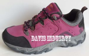 Low Cut Fashion New Style Trekking Outdoor Shoes and Boots Waterproof (DH-209) pictures & photos