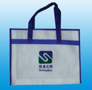 Non Woven Hand Bag pictures & photos