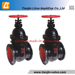 Tianjin Manufacturer Cast Iron Gate Valve pictures & photos