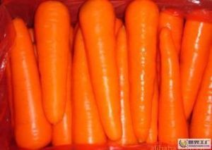 Top Quality New Crop Fresh Carrot (M grade) pictures & photos