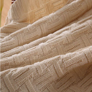 High Quality Fancy-Weave Cotton Knit Blanket (DPFB8016) pictures & photos