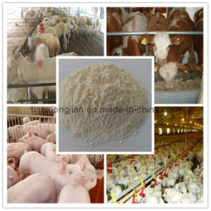 Zinc Oxide for Feed Grade pictures & photos