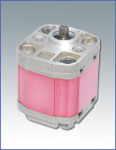 Reversible Hydraulic Gear Pump (CBTS)