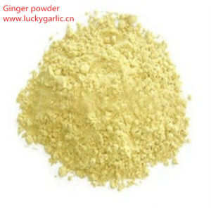 100% Pure Spice Ginger Powder pictures & photos