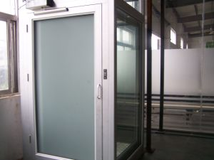 Villa/Home Lift for 3-5 Persons Elevator pictures & photos