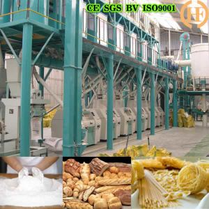 Hot Selling 30t/D Wheat Flour Mill Machine (30T/D) pictures & photos