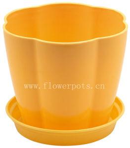Four Colors Flower Planter (KD661-KD663) pictures & photos