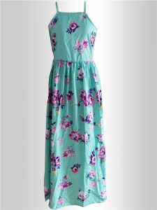 Hot Sale Ladies Printed Flowers Long Dresses (17014) pictures & photos