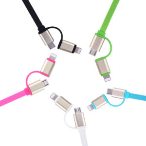2 in 1 Lightning & Micro USB Sync Data and Charging Cable for Micro and Lightning Cell Phone pictures & photos