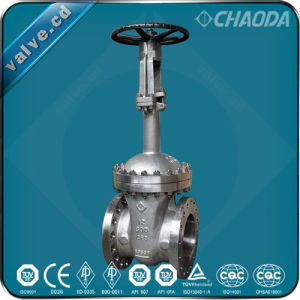 API600 Cryogenic Flanged Gate Valve pictures & photos